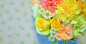 花の壁紙#22サムネイル