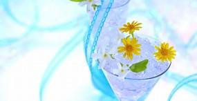 花の壁紙#36サムネイル