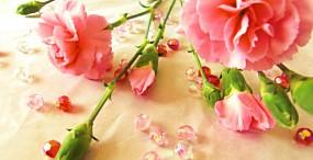 花の壁紙#41サムネイル