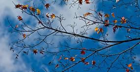 空・雲の壁紙#119サムネイル
