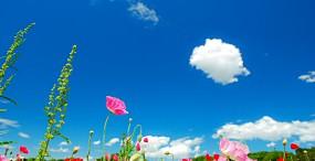 空・雲の壁紙#38サムネイル