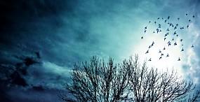 空・雲の壁紙#43サムネイル