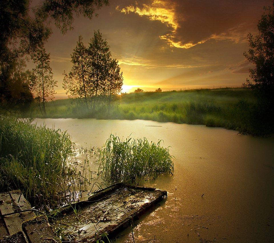 川の辺のスマホ用壁紙(Android用/960×854)