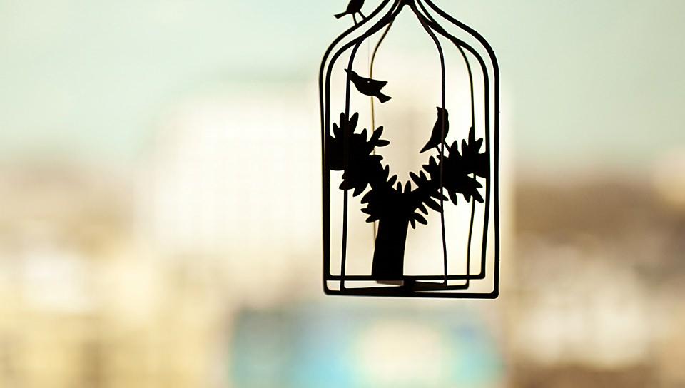 篭の中の鳥の壁紙(PSP Vita用/960×544)
