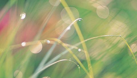 夏の想い出の壁紙(PSP用/480×272)