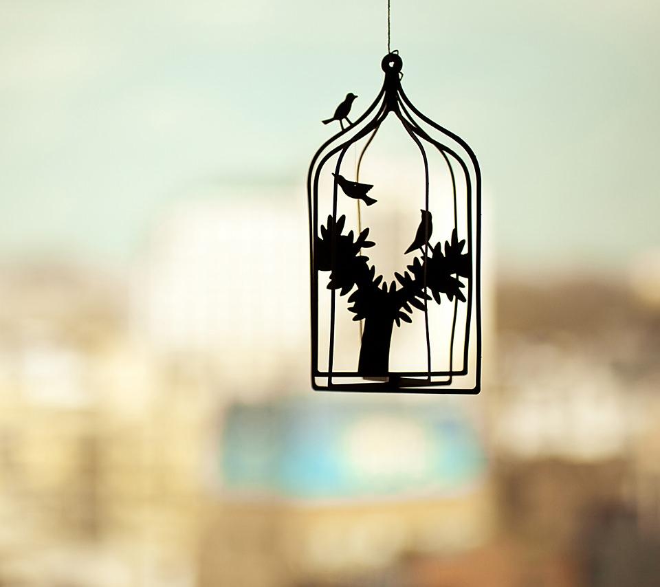 鳥かごのスマホ用壁紙(Android用/960×854)