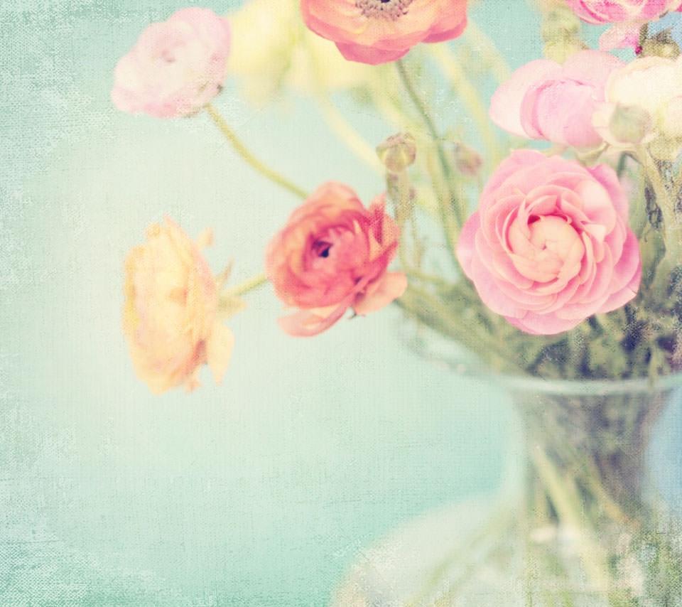 ポピーの花のスマホ用壁紙 Android用 960 854 Wallpaperbox