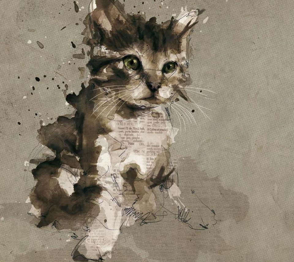 かわいい猫のスマホ用壁紙(Android用/960×854)