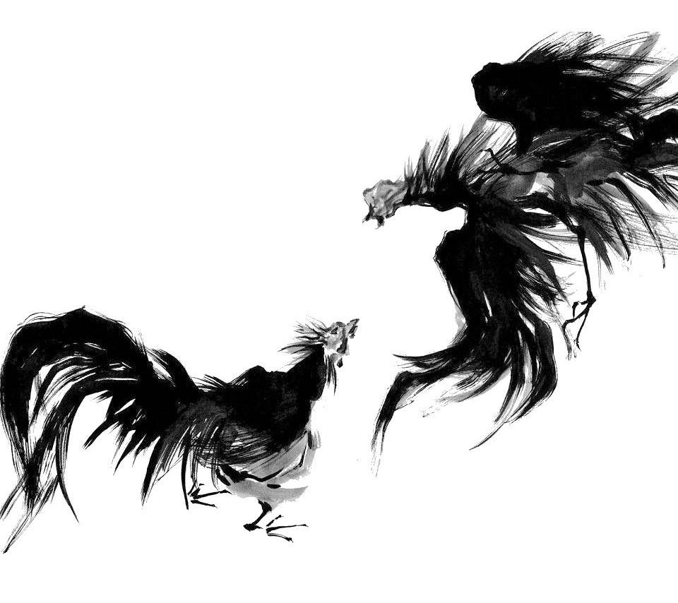 軍鶏 スマホ用壁紙(Android用/960×854)
