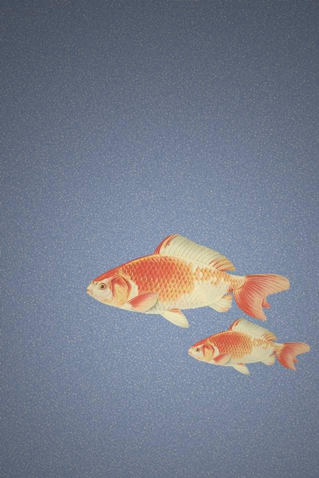 和風の鯉 スマホ用壁紙(iPhone用/640×960)