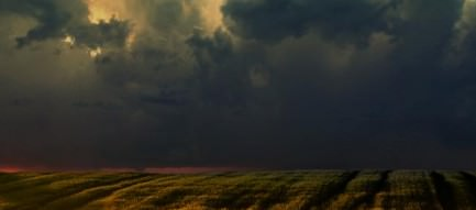 ライ麦畑でつかまえて スマホ用壁紙(iPhone用/640×960)