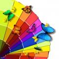 カラフルな蝶 iPhoneスマホ用壁紙