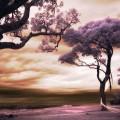 桜の風景 Androidスマホ用壁紙