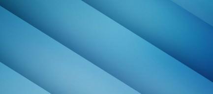 冬のダンボー Androidスマホ用壁紙