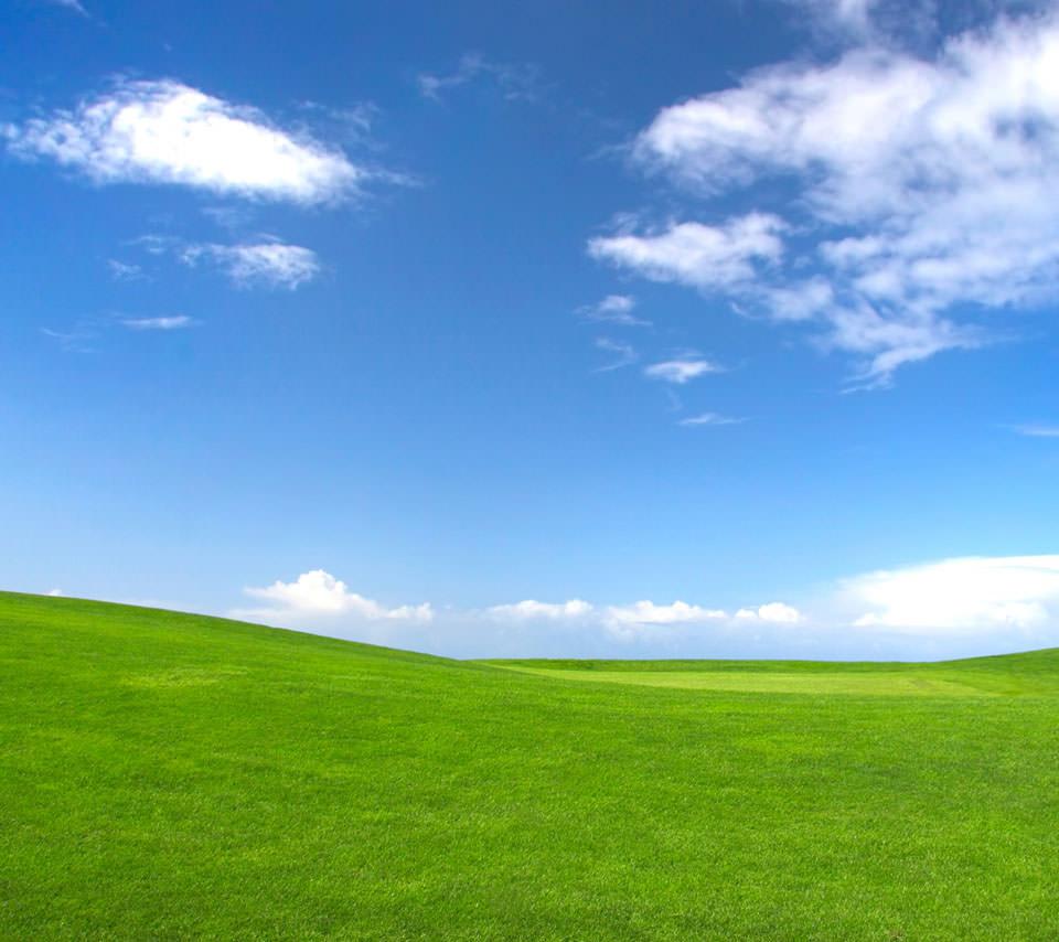 Windowsの丘 Androidスマホ用壁紙 Windows定番の丘 Androidスマホ用壁
