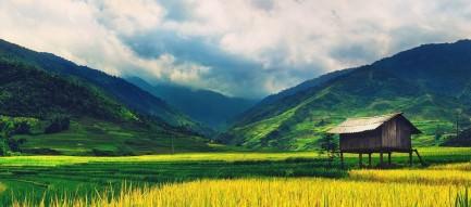 夏の田舎の風景 Androidスマホ壁紙