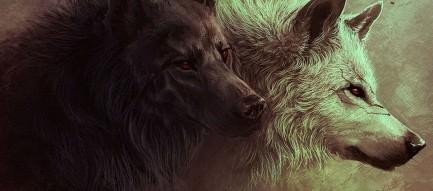 狼の肖像 Androidスマホ壁紙
