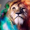 ライオンの憂い Androidスマホ壁紙