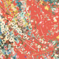 カラフルな花 / ポール&ジョー iPhone5 スマホ用壁紙
