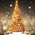 キラキラのクリスマスツリー Androidスマホ壁紙
