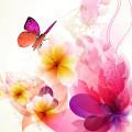 Flower moment スマホ壁紙