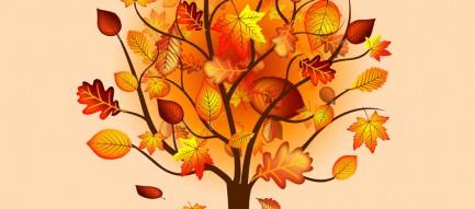 秋の樹木 スマホ壁紙