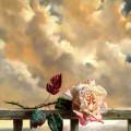 棘のついた薔薇 スマホ壁紙