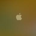 茶色のiPhone5 スマホ用壁紙