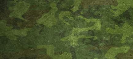 かっこいい緑の迷彩 iPhone5 スマホ用壁紙