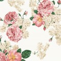高級感のあるピンクの薔薇 iPhone5 スマホ用壁紙