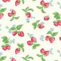 苺のイラスト iPhone5 スマホ用壁紙
