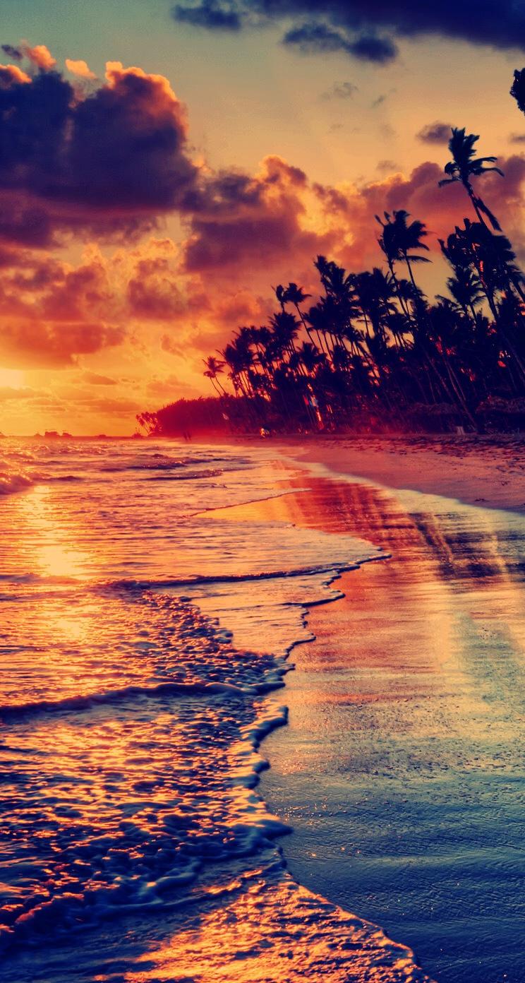 あなたはハワイが好き ハワイの壁紙 ハワイ アロハストリート 壁紙:日立の樹オンライン 無料壁紙