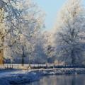 冬の公園 iPhone6 Plus 壁紙