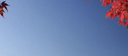 富士山と紅葉 iPhone5壁紙