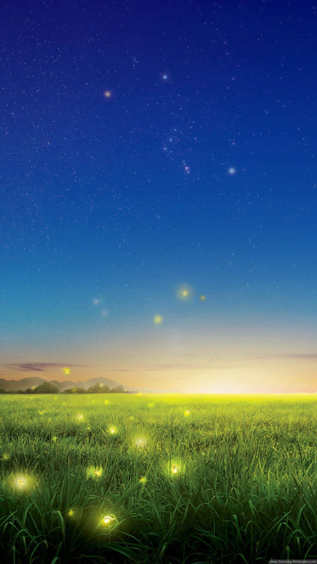 蛍と星空 iPhone6 Plus壁紙