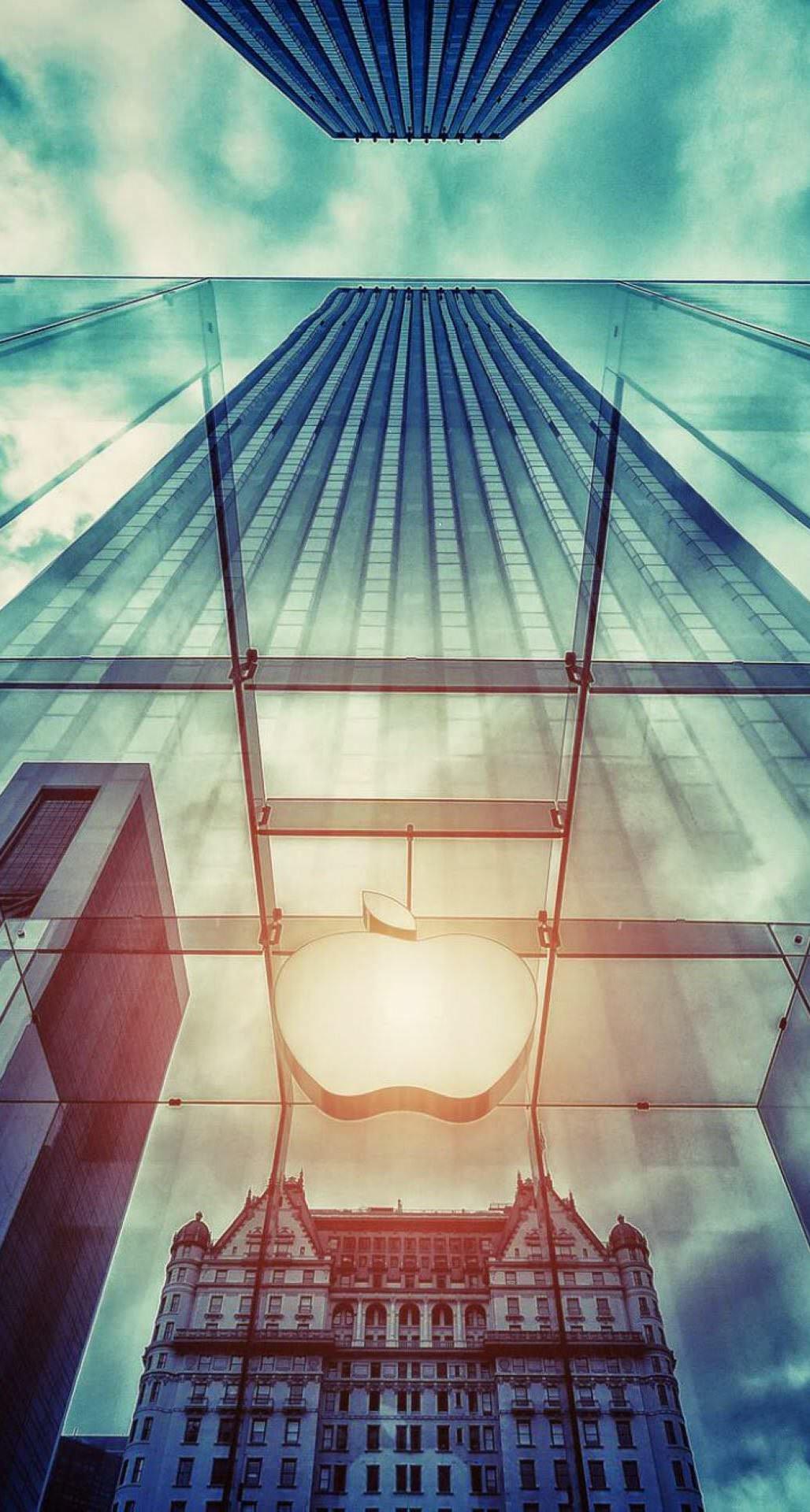 アップルストアー iPhone6 Plus壁紙