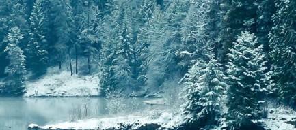 凍てついた森と湖 iPhone5壁紙