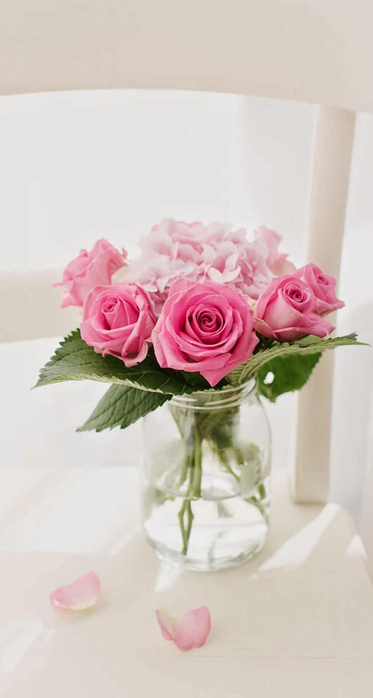 花瓶に入ったピンクの薔薇 iPhone5壁紙