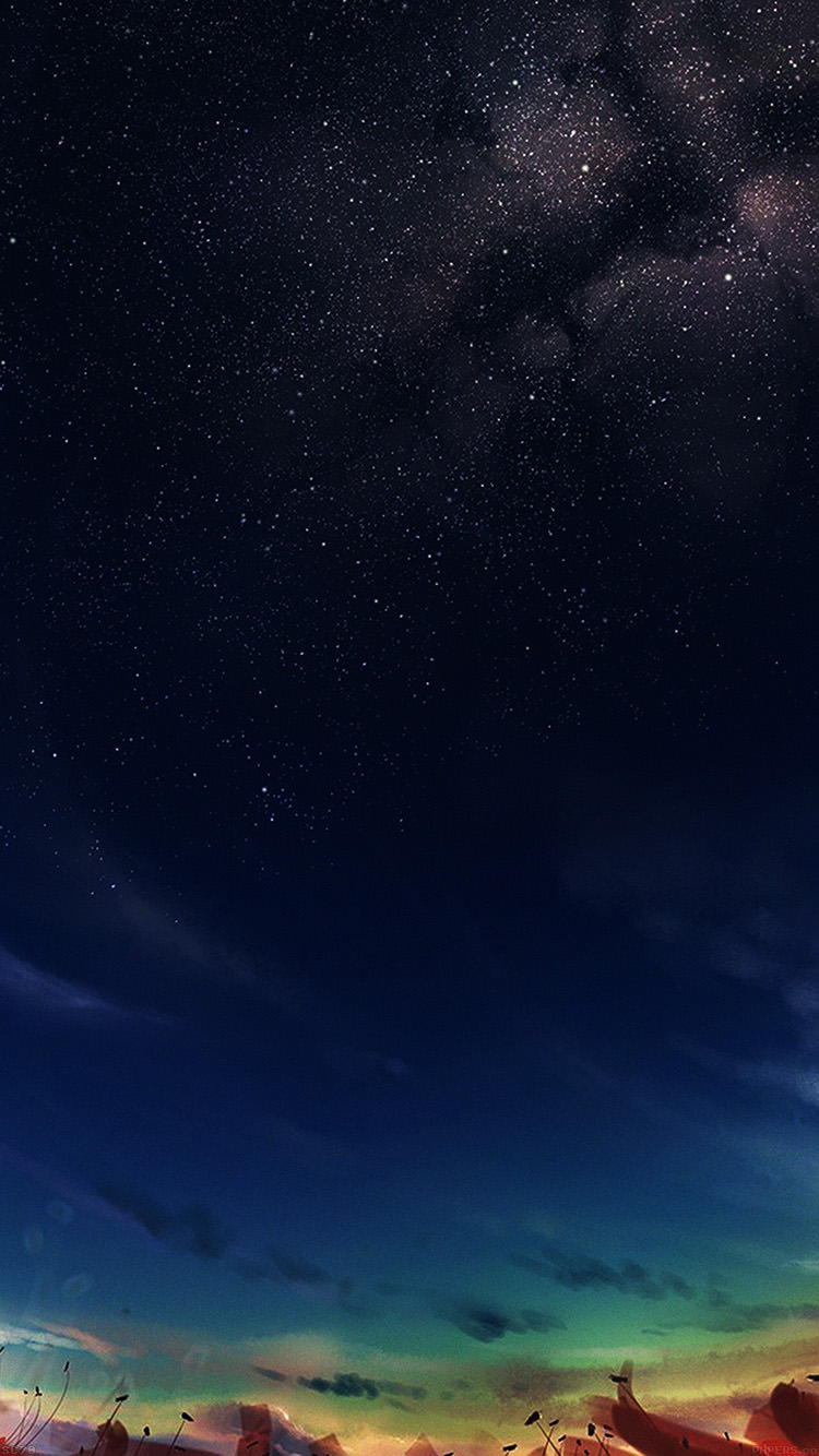 見上げる星空 iPhone6 壁紙