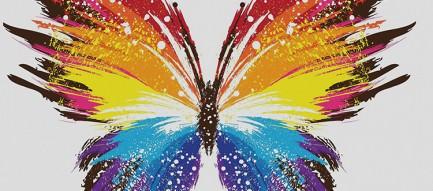 カラフルな蝶 iPhone6 壁紙