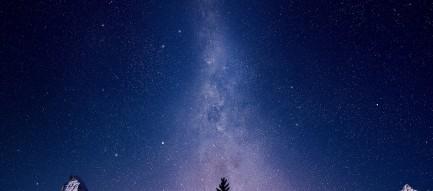 綺麗な星空とツリー Android壁紙