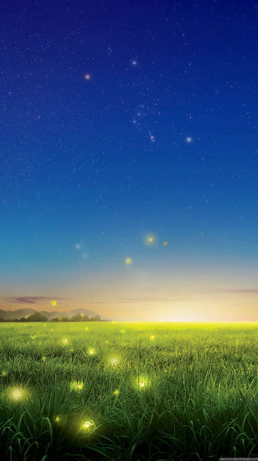 蛍と銀河 iPhone6壁紙