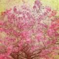 桜と鳥のイラスト iPhone6壁紙