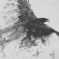 ヤタガラス iPhone6壁紙