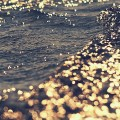 光る水面 iPhone6壁紙