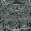 冬の城郭 iPhone6壁紙