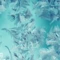 凍てついた葉模様 iPhone6壁紙