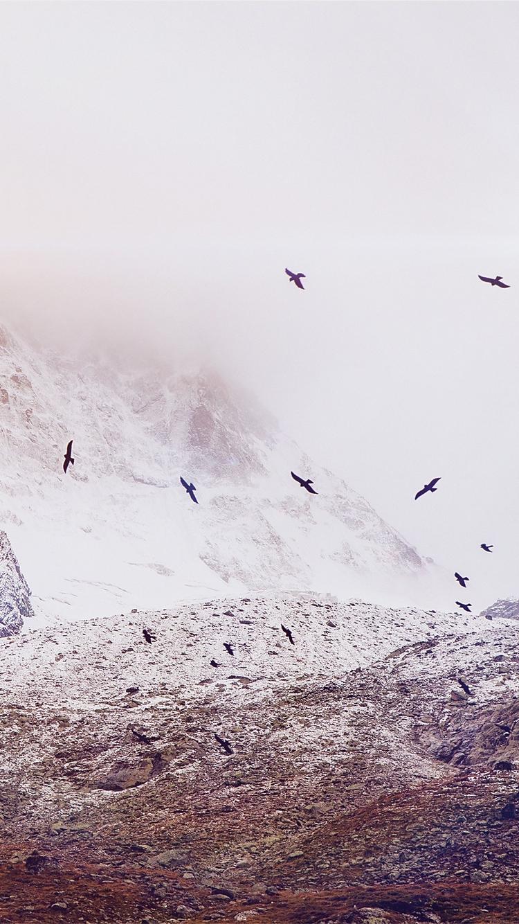 空飛ぶ鳥の群れ iPhone6壁紙