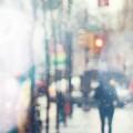 ガラス越しの雨の日 iPhone6壁紙