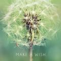 MAKE A WISH iPhone6壁紙